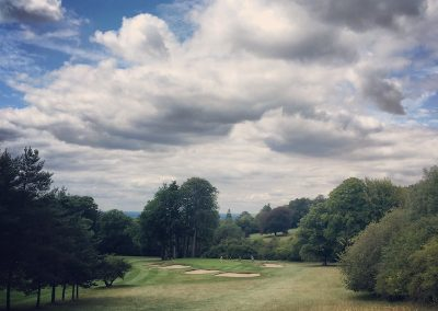 Tyrells wood golf club - another well protected green